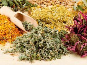 Как и какие травы от курения помогают?