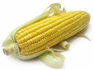 Молодая кукуруза: в чем польза?