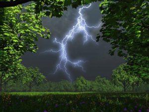 19 июня в Смоленской области ожидаются дожди с грозами