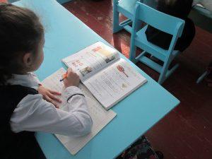 Жители деревень Чекулино, Шпаки и Фролы Смоленского района не останутся без школы