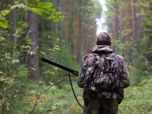 На Смоленщине открывается сезон осенней охоты