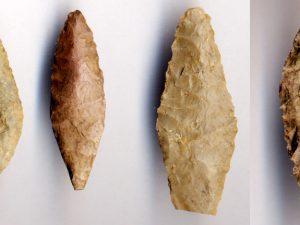 Археологи из Эрмитажа обнаружили на Смоленщине украшения эпохи неолита
