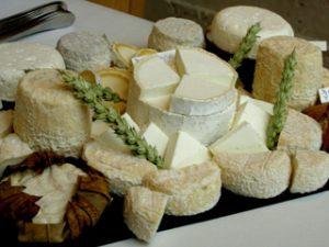На Смоленщине появилось еще одно производство козьего сыра