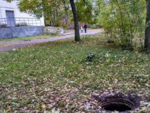 Бездомная собака устроилась на АЗС в Смоленской области