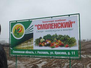 В Смоленской области стартовало строительство крупного тепличного комплекса