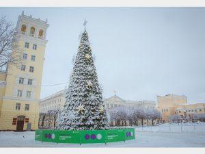 На главной площади города установили новогоднюю елку