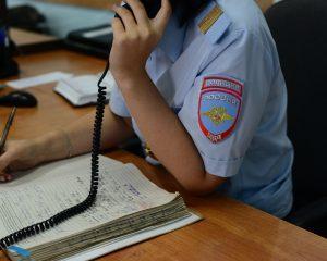 Смоленская полиция запускает работу «горячей линии» по выборам