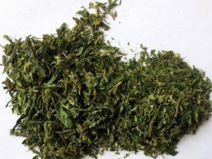 Сотрудники полиции изъяли у жителя Велижа марихуану