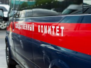 В Смоленске полицейские задержали подозреваемого в действиях сексуального характера