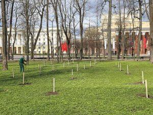 В Смоленской области отмечен рост цен на сметану и творог