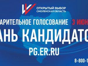 207 смолян стали кандидатами праймериз «Единой России»