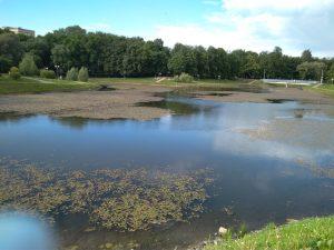 «Зеленстрой» оправдался за заболоченное озеро в парке 1100-летия Смоленска