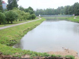 Покрытие на мосту в парке 1100-летия Смоленска испортили вандалы