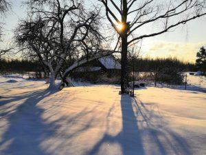 27 января в Смоленском госуниверситете пройдёт День открытых дверей