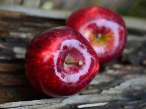 Яблоки под видом овсянки не пустили в Смоленскую область