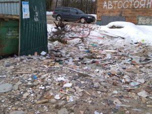 Активисты ОНФ призвали власти Смоленской области решить проблемы с вывозом мусора