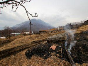 Смоленские спасатели 50 раз выезжали на тушение пала травы за сутки