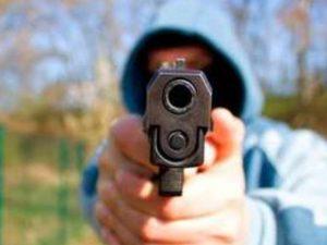 Мужчина с овчаркой устроил стрельбу в Смоленске