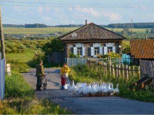 На развитие смоленского села было направлено более 100 млн рублей