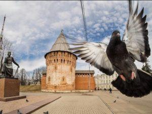 На башне Громовой в Смоленске появилась вывеска