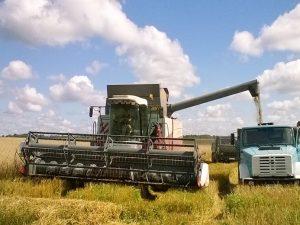 Во всех районах Смоленщины ведётся заготовка кормов