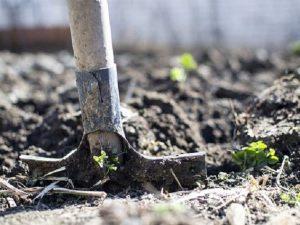 Археологи обнаружили фрагмент склада в «Лопатинском саду» Смоленска