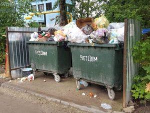 Решить мусорные проблемы смолянам поможет информационная система «РЭО Радар»