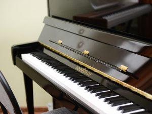 У смоленских музыкальных школ появились новые инструменты