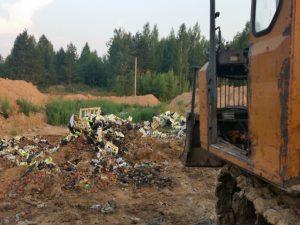 Под Смоленском уничтожили более 8 тонн груш
