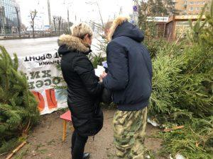 В Смоленске проводят рейды по местам торговли ёлками