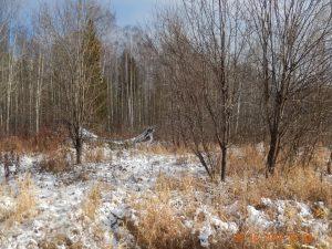 Москвич поплатился за брошенные земельные участки в Смоленской области