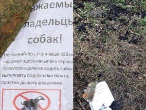 В Смоленске активизировались догхантеры в Промышленном районе