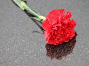 Смолян приглашают присоединиться к благотворительной акции «Красная гвоздика»