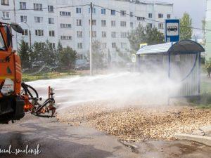 В Смоленске продолжается дезинфекция улично-дорожной сети