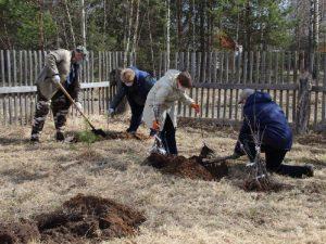 В Смоленской области пополнили «Сад памяти»