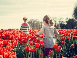Смолян призывают не забывать о детской безопасности