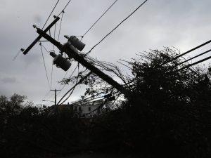 Сильный ветер и дожди. МЧС объявило штормовое предупреждение в Смоленской области