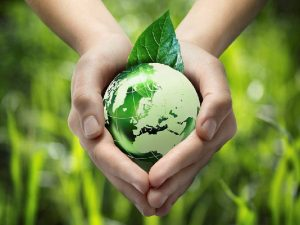 В России состоялось масштабное экологическое тестирование