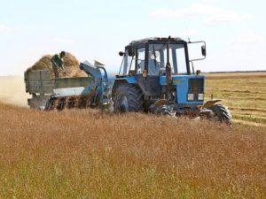 В СКР возбудили уголовное дело из-за смерти рабочего при уборке льна в Смоленской области