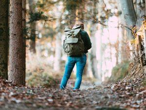 Смолянам напоминают о правилах безопасности в лесу