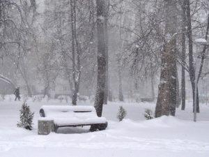 В Смоленской области объявлен желтый уровень погодной опасности на сегодняшний день