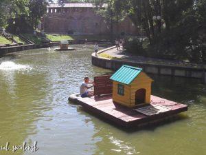 В Смоленске появился еще один домик для лебедей на пруду «Лопатинского сада»