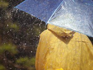 Дождь и гроза. Синоптики рассказали о погоде в Смоленске в конце рабочей недели