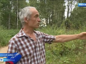 На месте исчезновения маленькой девочки под Смоленском видели неизвестный автомобиль