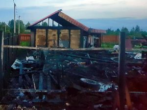 В Смоленской области в пожаре сгорело 100 кур
